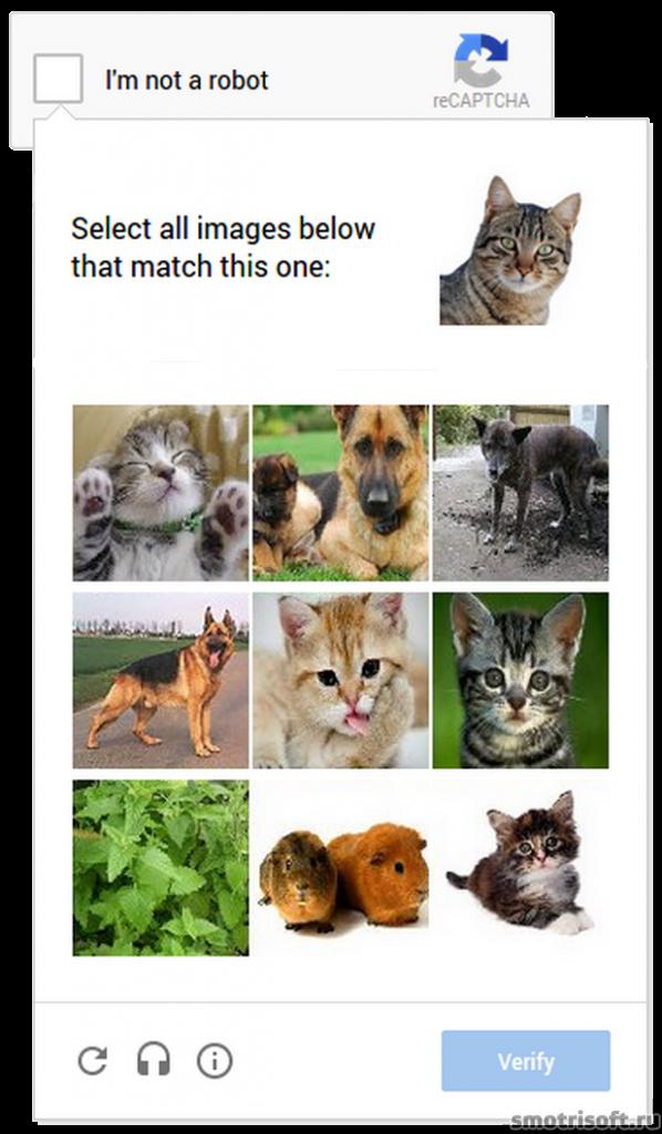 Новая Google Captcha (3)