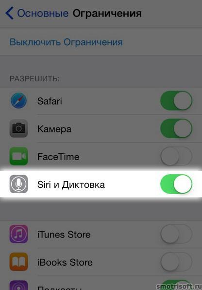 Siri заговорила по-русски (23)