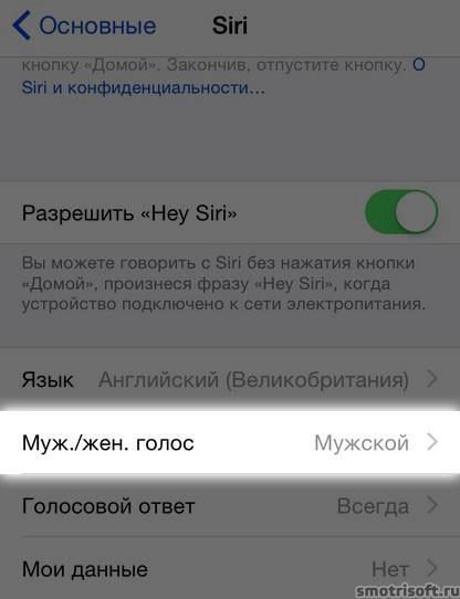 Siri заговорила по-русски (5)-