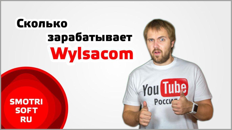 Сколько зарабатывает Wylsacom